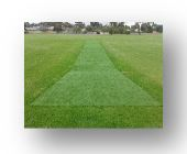 TURF TOP CRICKET PITCH COVER